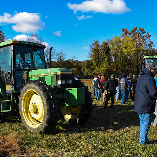 Breeding Better Cover Crops